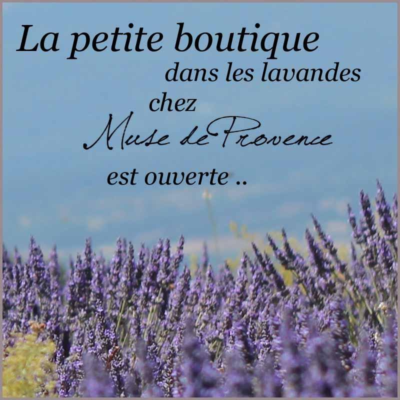 La petite boutique de Muse de Provence