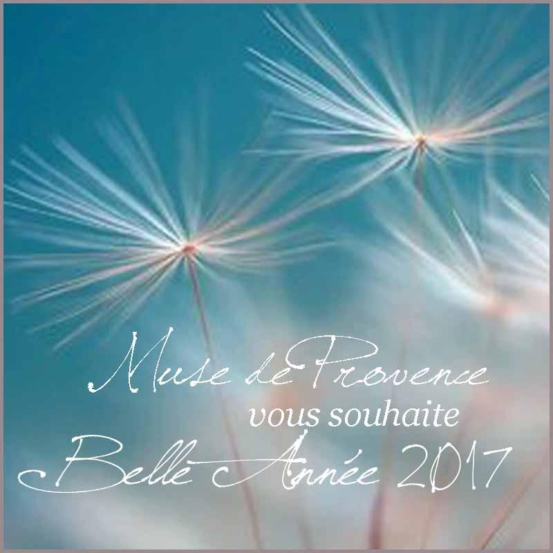Belle Année 2017!